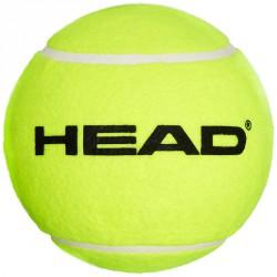 Teniszlabda Head közepes méret Teniszlabda Head