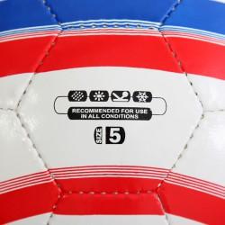 Futball labda Record No. 5 Futball labda Aktivsport