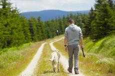 A séta kincset érő jótékony hatásai