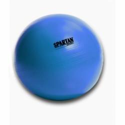 Gimnasztikai labda Power 55 cm kék Sportszer Spartan