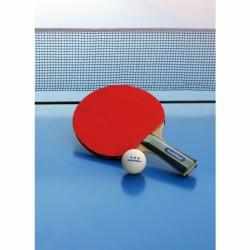 Ping-Pong ütő tok Hudora BLACK FRIDAY Hudora