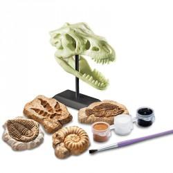 4M foszforeszkáló őskövület készlet Tudományos, szórakoztató játékok