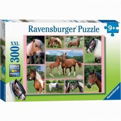 Puzzle 300XXL - Lovak Ravensburger Puzzle Ravensburger