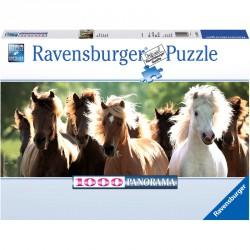 Puzzle 1000 db panoráma - Vadlovak Ravensburger Puzzle Ravensburger