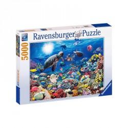 Puzzle 5000 db - Tengeri élet Ravensburger Puzzle Ravensburger